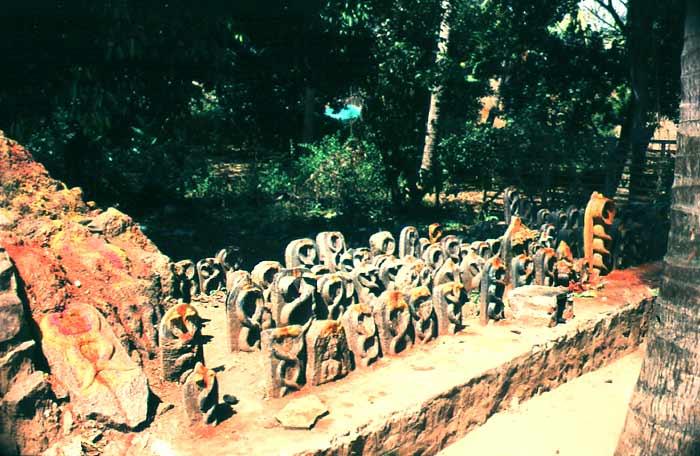 Schlangentempel in Andhra- Pradesh (Indien)